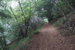 percorso-monte-cengio-in-gravel-bike-6